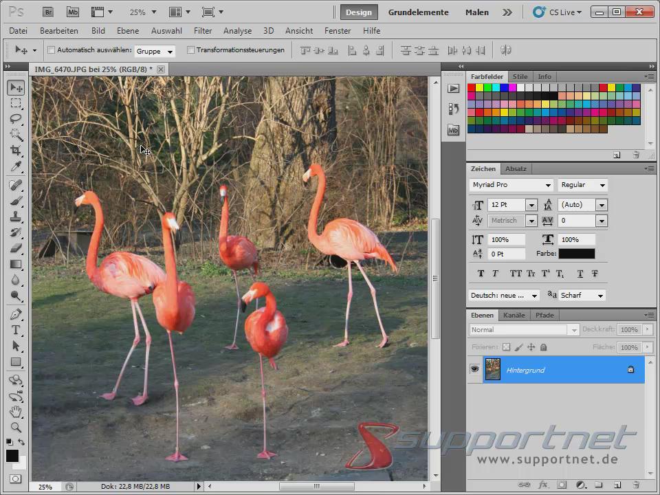 01-Adobe-Photoshop-CS5--Content-Aware-Inhaltssensitiv-Flamingo_470.png