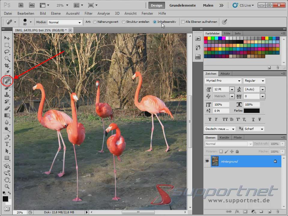 02-Adobe-Photoshop-CS5--Content-Aware-Inhaltssensitiv-Flamingo-Berichsreparatur-Pinsel-Werkzeug_470.png