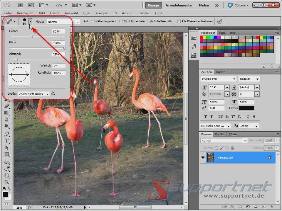 03-Adobe-Photoshop-CS5--Content-Aware-Inhaltssensitiv-Flamingo-Berichsreparatur-Pinsel-Werkzeug-Radius-einstellen_470.png
