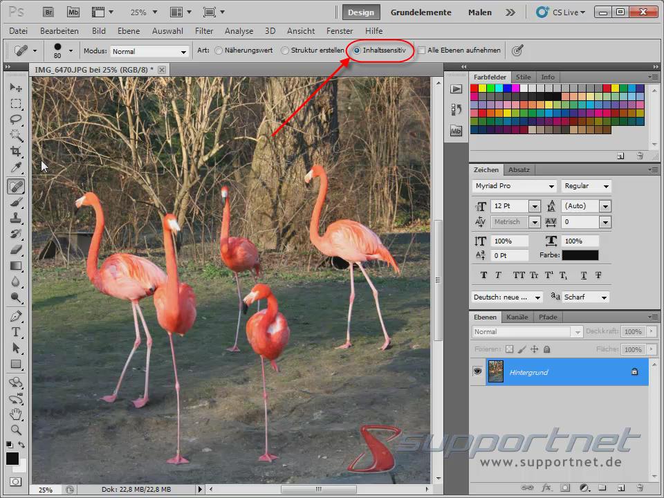 04-Adobe-Photoshop-CS5--Content-Aware-Inhaltssensitiv-Flamingo-Berichsreparatur-Pinsel-Werkzeug-Inhaltssensitiv_470.png