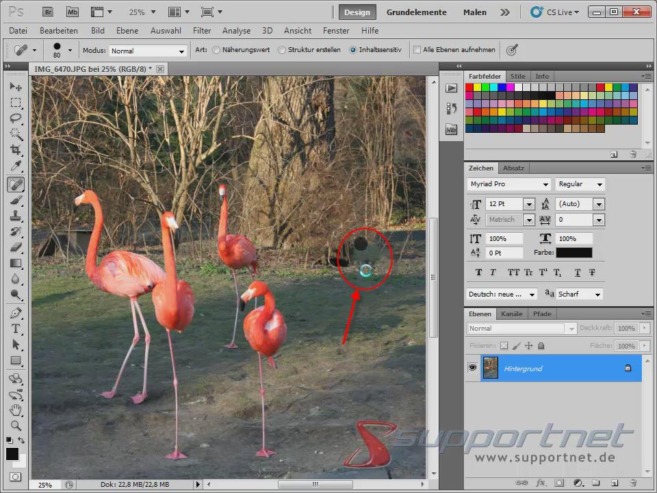 09-Adobe-Photoshop-CS5--Content-Aware-Inhaltssensitiv-Flamingo-Berichsreparatur-Pinsel-Werkzeug-Inhaltssensitiv-Korrektur_470.png
