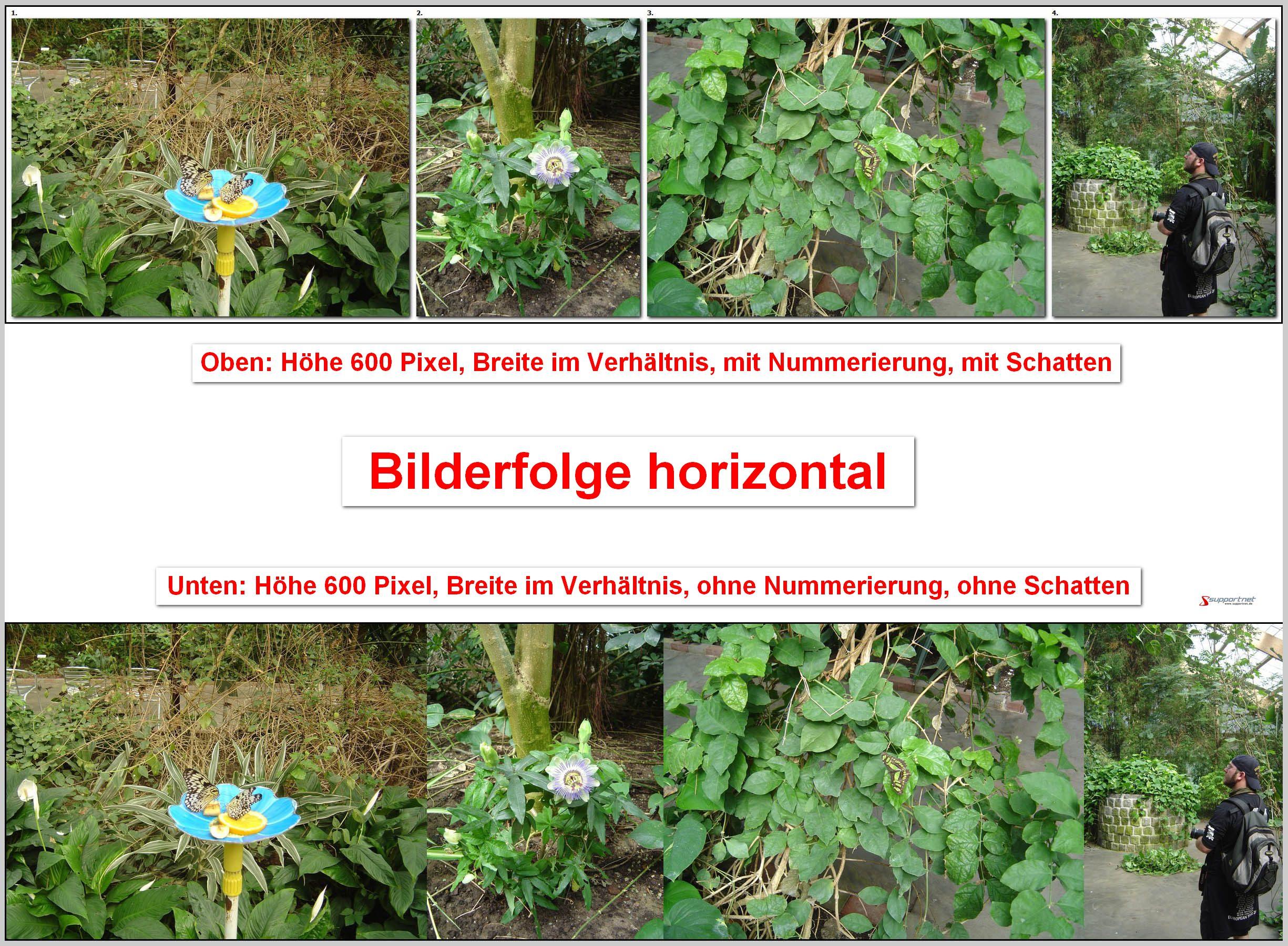 02-FastStone-Image-Viewer-Bilderfolge-horizontal-80.jpg
