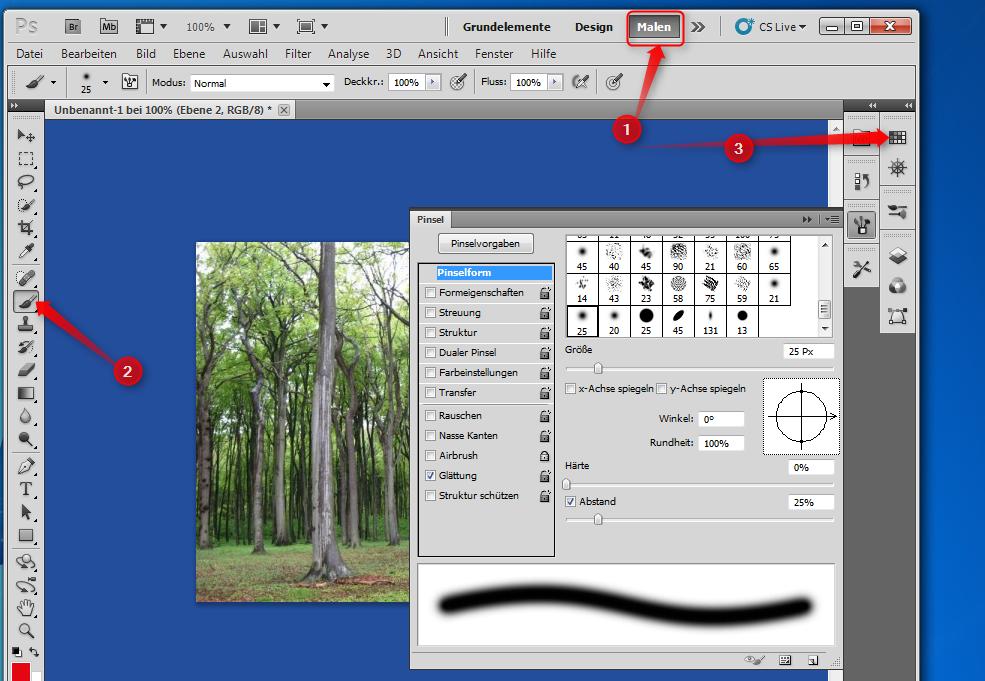 02-Adobe-Creative-Suite-5-PhotoshoCS5-Screenshot-Pinsel-und-Farbpalette-470.png