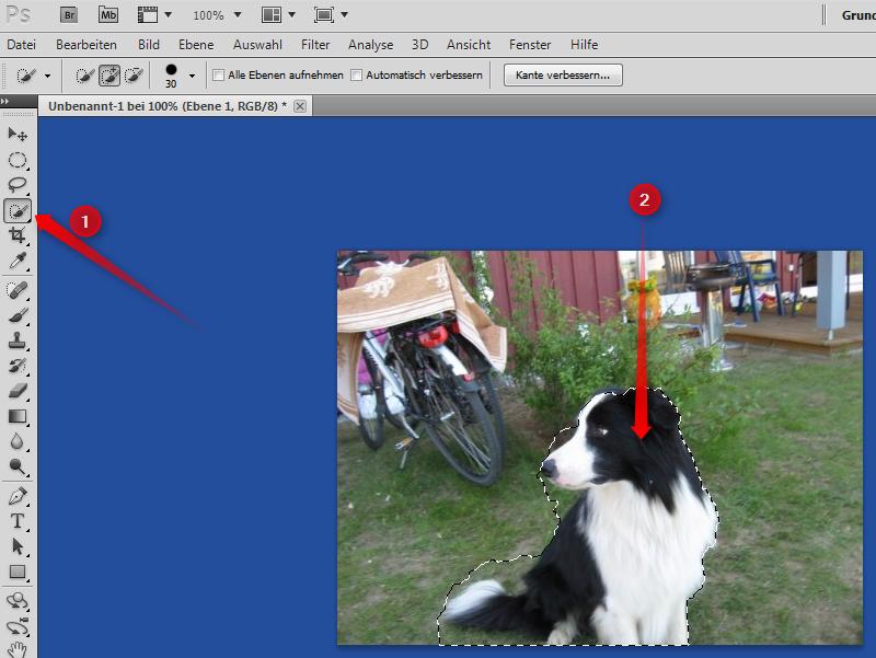 31-Adobe-Creative-Suite-5-PhotoshoCS5-Screenshot-Schnellauswahl-470.png