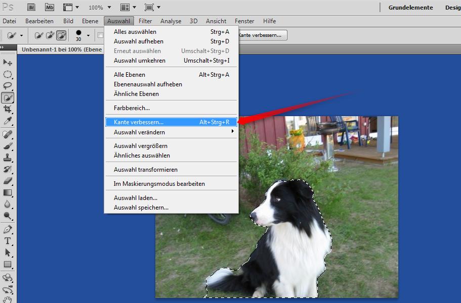 32-Adobe-Creative-Suite-5-PhotoshoCS5-Screenshot-Schnellauswahl-Kante-verbessern-470.png