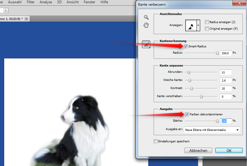 33-Adobe-Creative-Suite-5-PhotoshoCS5-Screenshot-Schnellauswahl-Kante-verbessern-und_Farben-dekontaminieren-470.png