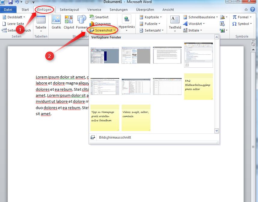 01-MS-Office-Microsoft-Word-2010-Screenshot-einfuegen-Einfuegen-Screenshot-470.png