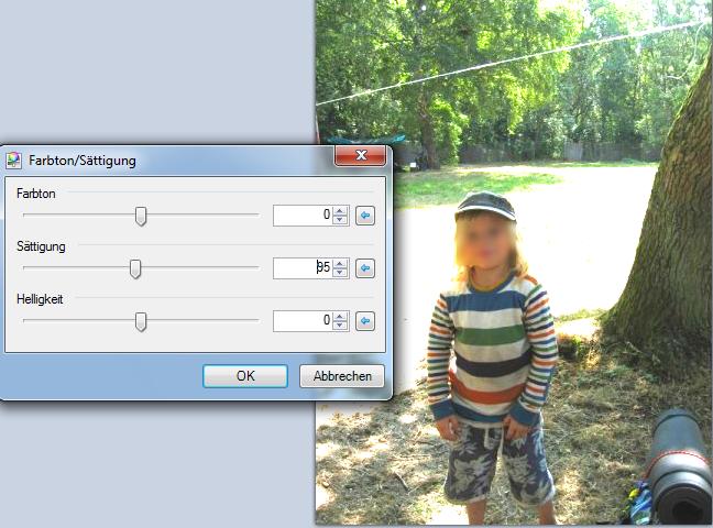 10-Gratis-Bildbearbeitungsprogramm-Paint.NET-Korrektur-der-Belichtung-Farbton-Saettigung-manuell-verstellen-mit-Ergebnis-470.png