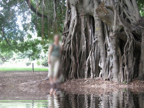 06-Fotos-mit-Wasserspiegelung-erstellen-in-Paint.NET-Ergebnis2-470.png