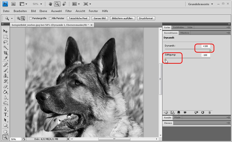 04-verwenden-Sie-maximale-Dynamik-und-minimale-Saettigung-um-ein-kontrastreiches-schwarz-weiss-bild-zu-erhalten-470.jpg