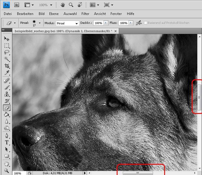 08-Das-Auge-im-Bildausschnitt-sichtbar-machen-470.jpg