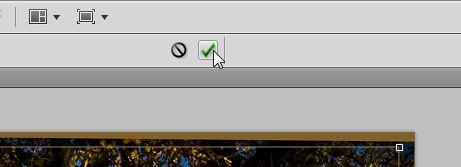 09-Klicken-Sie-auf-das-gruene-Haeckchen-um-das-Bild-zu-beschneiden-470.jpg?nocache=1308043748453