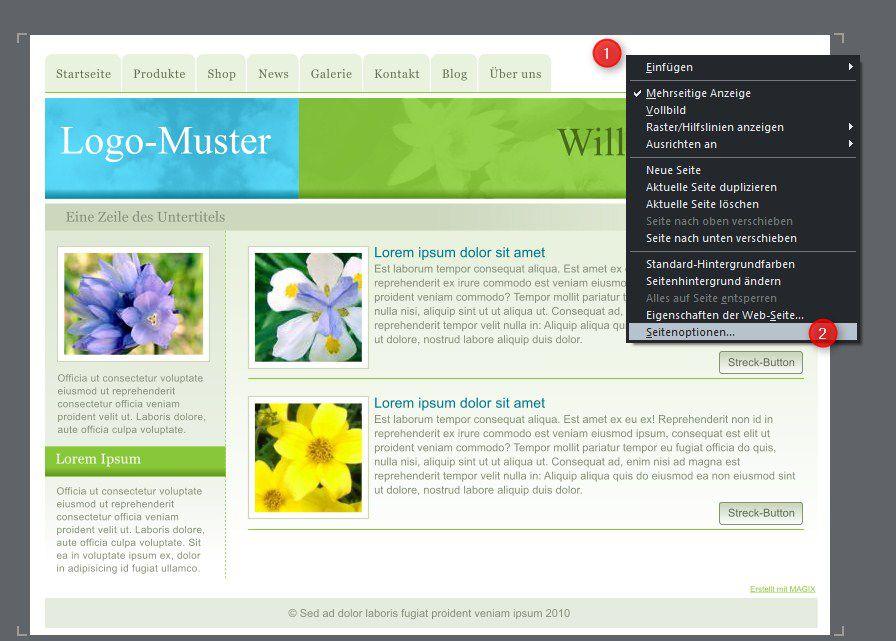 06-Magix_Web_Designer_7-_Seitenoptionen-470.jpg?nocache=1314109877672