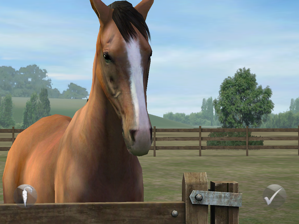 04-ipad-spiele-my-horse-470.PNG?nocache=1316623362067