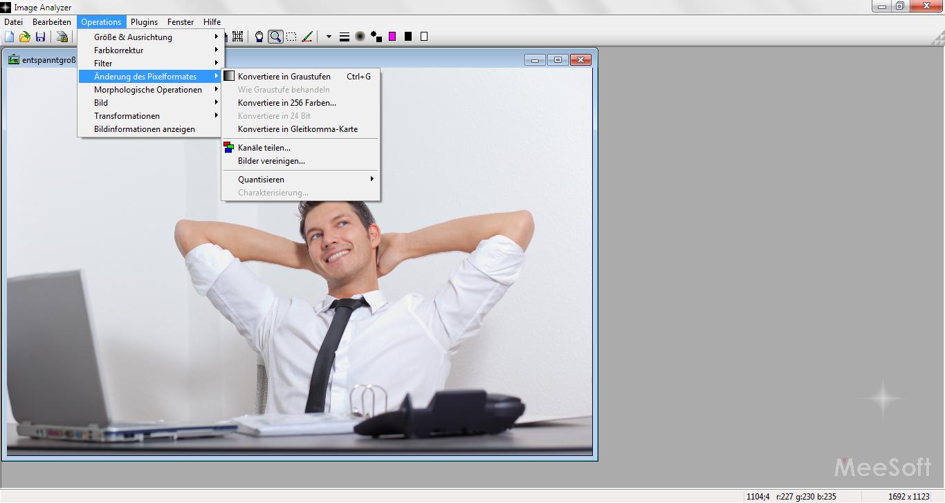 02-image-analyzer-bild-bearbeiten-pixelformat-470.png?nocache=1320170608290