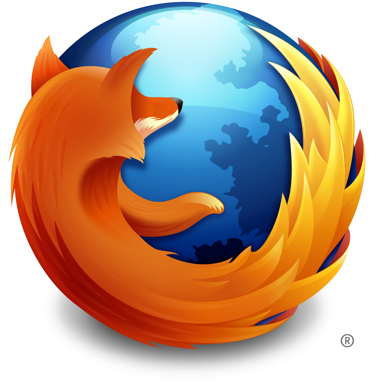 04-Future-2012_Was-Supportnet-im-Bereich-Software-erwartet-Chrome-80.png?nocache=1324561054389